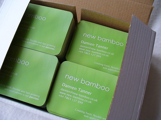 Damien Tanner 's Simple Green Business Card
