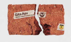 Gita Ayu 300x178 Best of Business Card 2010